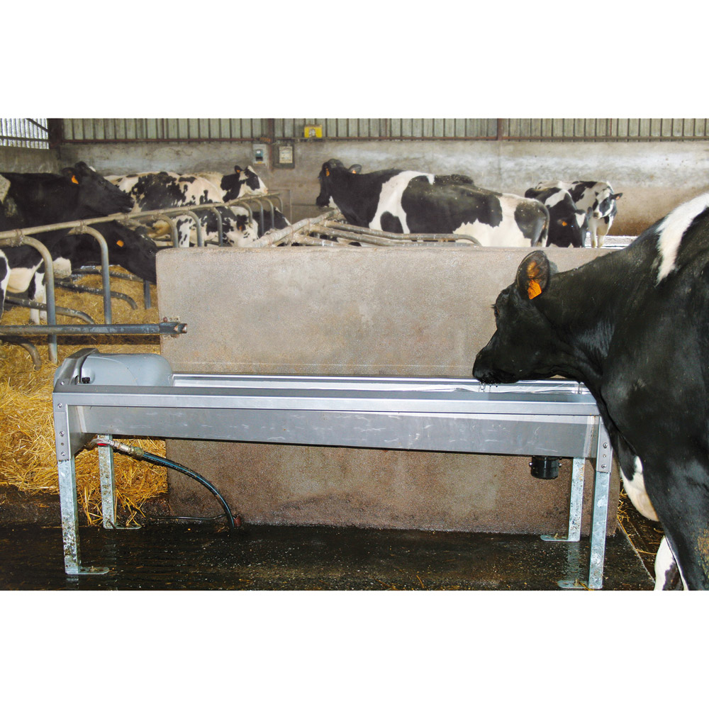 GV230 Stainless Steel Rapid-Drain Trough for Dairy Cows
