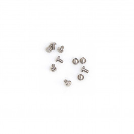 BAG WITH 10 STAINLESS STEEL SCREWS.