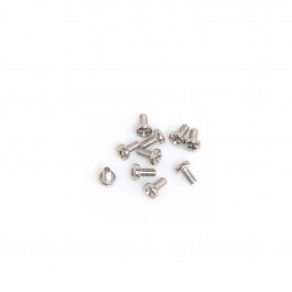 BAG WITH 10 STAINLESS 6X12 STEEL SCREWS.