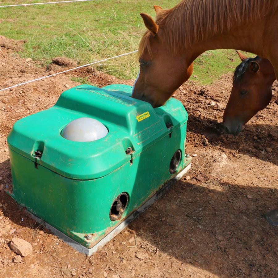 Abreuvoir antigel chevaux THERMOLAC 75 GV